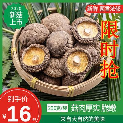 菇厂直销福建干香菇农产品食用菌特产干货香菇干香菇散货厂家价格
