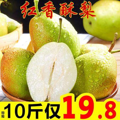 红香酥梨梨子水果香梨新鲜批发当季3斤5斤10斤脆甜整箱非库尔勒