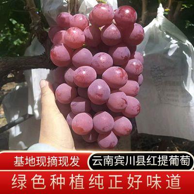 云南红提葡萄应季红地球现采现发好吃低糖新鲜水果整箱装包邮