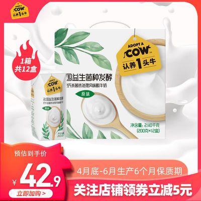 限份认养一头牛常温原味酸奶200g*12盒*1箱风味酸牛奶整箱
