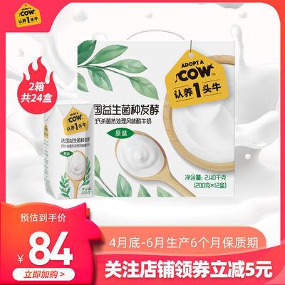 认养一头牛常温原味酸奶200g*12盒*2箱风味酸牛奶整箱批特价