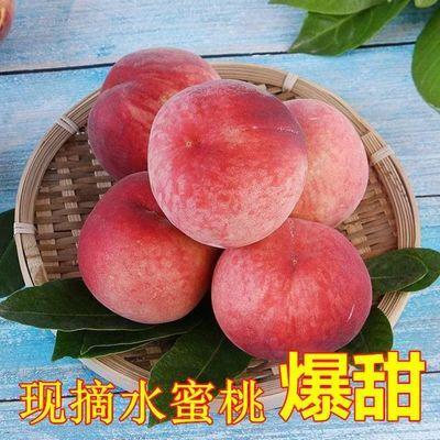 新品现摘山东脆甜水蜜桃当季毛桃水果新鲜非油桃血桃脆桃子阳山水