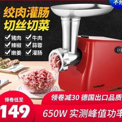 德国Tenfly绞肉机家用电动全自动小型商用不锈钢碎肉馅香肠灌肠机