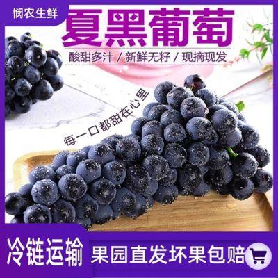 现摘夏黑葡萄整箱新鲜当季水果黑提子黑加仑巨峰无籽葡萄孕妇包邮