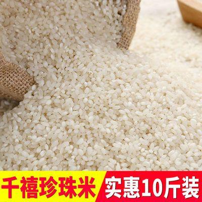 大米10斤20斤装特价批发珍珠香米圆粒香软糯粳米真空江苏特产5斤