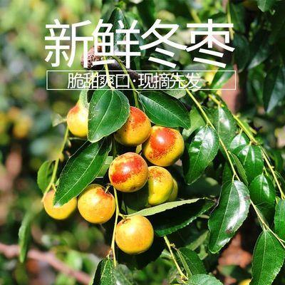 https://t00img.yangkeduo.com/goods/images/2020-07-27/29fe28bb860ce6dec234a2843ca2107e.jpeg