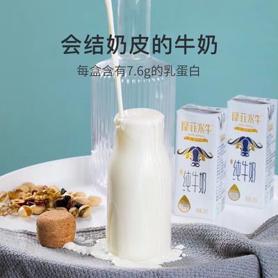 皇氏乳业来思尔全脂摩菲水牛纯牛奶200g*10盒整箱营养睡前早餐奶