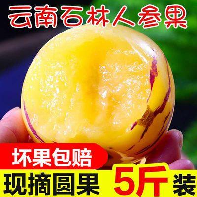 云南石林人参果3到10斤多规格包邮新鲜当季时令水果黄肉 薄皮多汁