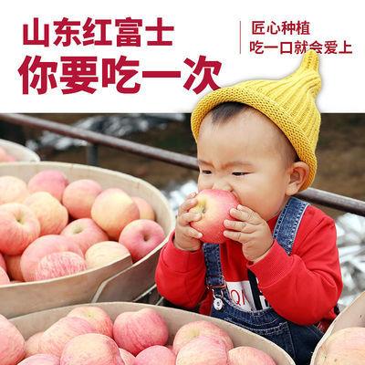 山东烟台红富士苹果脆甜多汁正宗新鲜水果一级条纹大果当季不打蜡