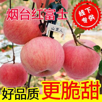 山东烟台栖霞红富士冰糖心苹果水果新鲜批发10斤装脆甜超甜苹果。