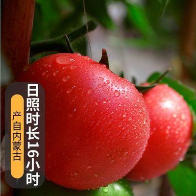 https://t00img.yangkeduo.com/goods/images/2020-07-29/e4b30562dc79127e11e06b6d100d9a7f.jpeg