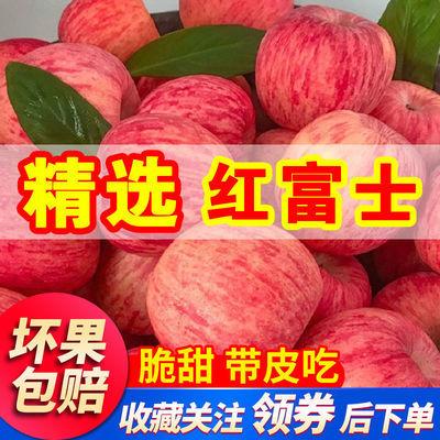 正宗山东烟台栖霞红富士苹果3/5/10斤 新鲜水果脆甜多汁整箱批发
