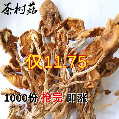 香菇干货开伞不开伞无硫茶树菇煲汤农家自产半野生新货茶树菇干货