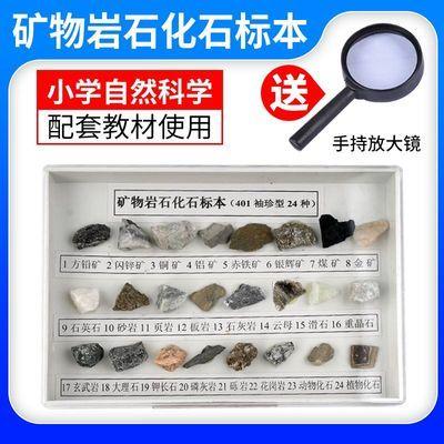 小学自然科学24种矿物岩石标本小学四年级科学实验化石标本