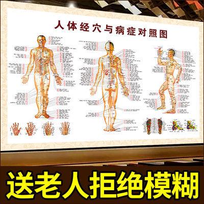 人体穴位图家用全身图解中医针灸艾灸人体经络穴位图大挂图女全身