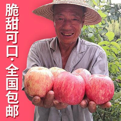 陕西红富士苹果水果脆甜新鲜整箱当季应季带箱3斤/5斤/10斤包邮