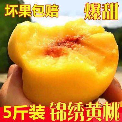 【顺丰现货】现摘锦绣黄桃新鲜水果桃子时令水果5斤7-12个