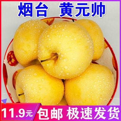 黄金帅粉面苹果宝宝孕妇老人粉面刮泥黄香蕉黄元帅烟台水果沙包邮