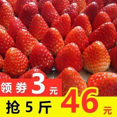 新款现摘草莓新鲜酸甜当季草莓鲜孕妇水果非奶油草莓丹东99奶油草