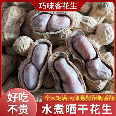 【五香花生5斤特价】水煮花生晒干蒜香咸干炒熟花生带壳批发1-5斤