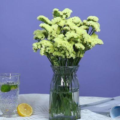 【特价】基地速递家用睡莲插花鲜花芍药直批康乃馨百合花束批发水