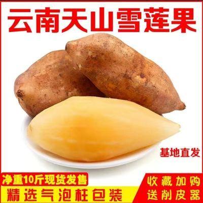 云南天山红泥沙雪莲果整箱3斤/5斤/10斤新鲜孕妇水果包邮