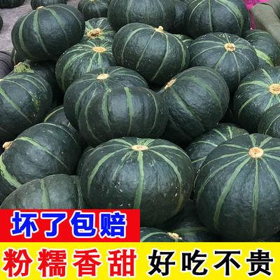 贝贝南瓜板栗小南瓜甜糯面口味宝宝辅食当季新鲜蔬菜日本进口种源