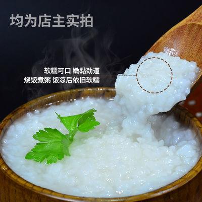 十里谷香崇明大米20斤软香梗米10KG鸭稻共生19新米农家自产珍珠米