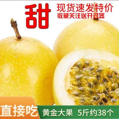 【香甜】台湾黄金百香果中大果黄色黄皮孕妇水果新鲜应季批发现摘