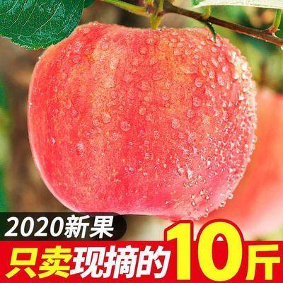 https://t00img.yangkeduo.com/goods/images/2020-08-17/164fc9bd7a4e0735377f2c1cb8d9cf20.jpeg