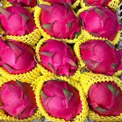 火龙果红心现采现摘现发应季水果甜台湾大红金都一号新鲜批发水果【10月2日发完】