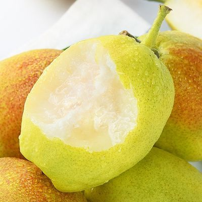 现摘现发陕西红香酥梨源自库尔勒香梨3/5/10斤新鲜脆甜多汁梨子