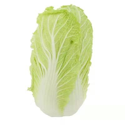 河南时令蔬菜新鲜大白菜农家自种火锅小白菜黄心菜有机娃娃菜现砍