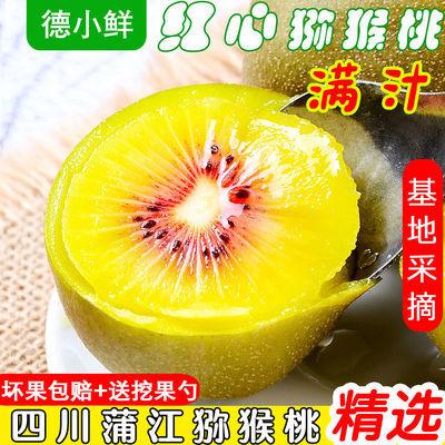 57876/四川蒲江红心猕猴桃水果批发一箱特大果当季孕妇水果爆甜奇异果