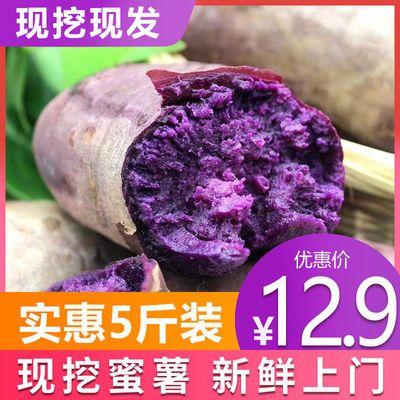 【现挖现发】新鲜紫薯现挖紫地瓜农家自种紫心地瓜紫薯番薯水果