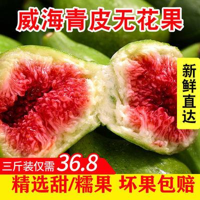 山东威海特产青皮无花果新鲜应季孕妇时令水果当季现摘现发3包邮