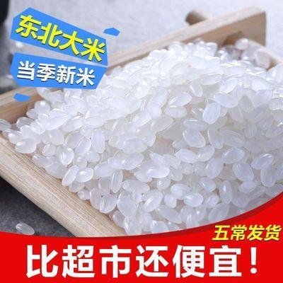 五常稻花香大米20斤 20年新米 长粒香米大米10斤 东北大米10斤