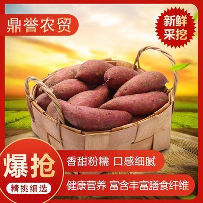 沙地自种现挖新鲜红黄心番薯红薯地瓜蜜薯西瓜红甜糯代餐3/5/10斤