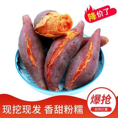 【坏薯包赔】红薯新鲜地瓜蜜薯板栗番薯紫薯批发小中大薯3/5/10斤