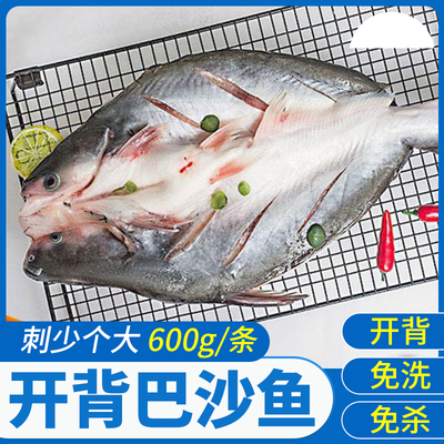 全程冷链运输活巴沙鱼精选600g纯龙利鱼水产海鲜湄公鱼整条海鱼