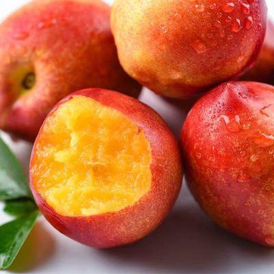 山东现摘新鲜桃子黄心油桃脆油桃子非毛桃当季水鲜货3/5斤