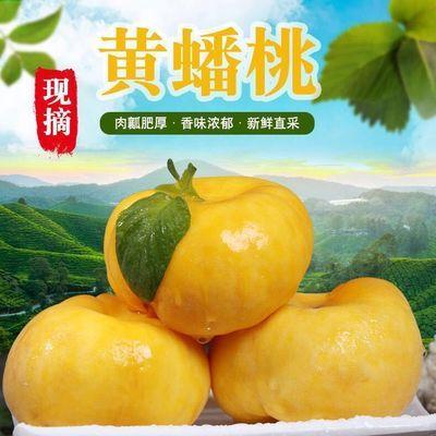 山东蟠桃扁桃当季现摘水新鲜桃子脆甜多汁油桃毛桃黄桃