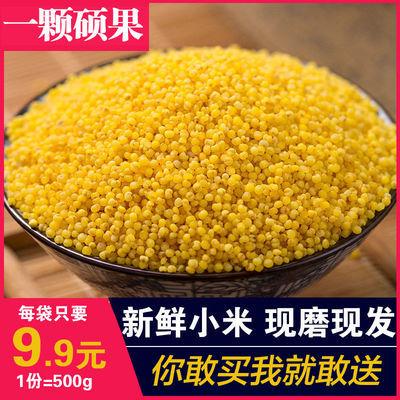 农家新小米养胃黄小米月子米农家五谷杂粮粥宝宝米小黄米1斤批发