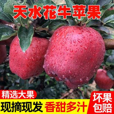 甘肃天水花牛苹果粉面刮泥老人宝宝辅食红蛇果应季苹果整箱包邮