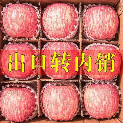【脆甜多汁】正宗山东烟台栖霞红富士苹果当季新鲜水果3斤5斤10斤