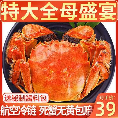 https://t00img.yangkeduo.com/goods/images/2020-09-04/3eff9d891a68ebcafd1219d2a376176e.jpeg