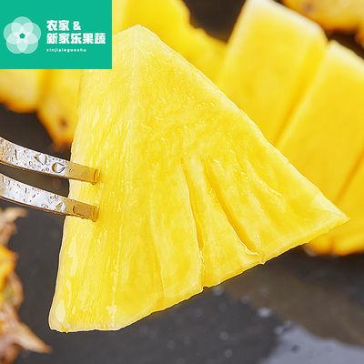 云双版纳钻凤梨当季水手撕凤梨新鲜无眼菠萝8斤应季甜