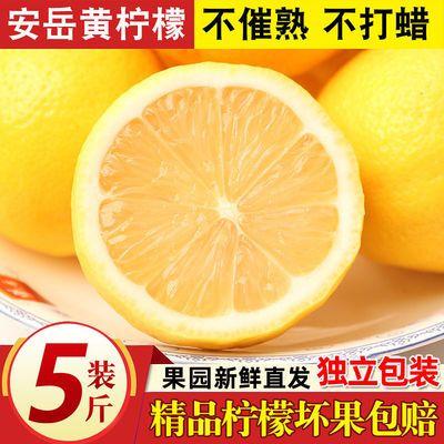 中国柠檬之都潼南黄柠檬新鲜当季现摘水果果园自产自销一级果