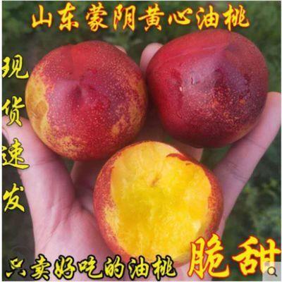 山东沂蒙山现货现摘黄心5斤0斤油桃新鲜水非毛桃水桃子