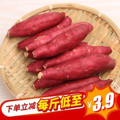临安特产天目山小香薯沙地红薯新鲜农家蜜薯 5斤金手指小番薯自种